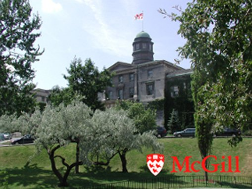 McGill Universitesi